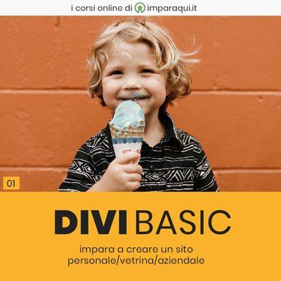 DiviBasic