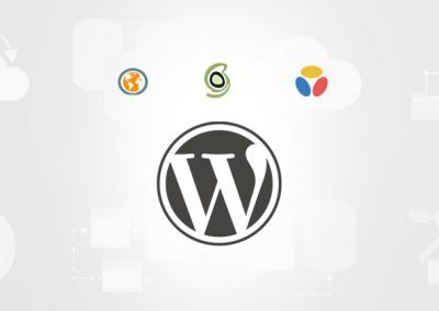 Top 3 migliori hosting per WordPress