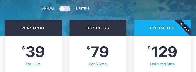 Temi WordPress per Elementor: le licenze di Ocean WP